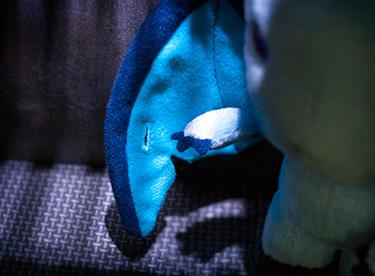 Injured Wing of Plushie Flock #002